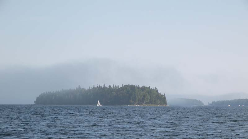 fog and sail boats